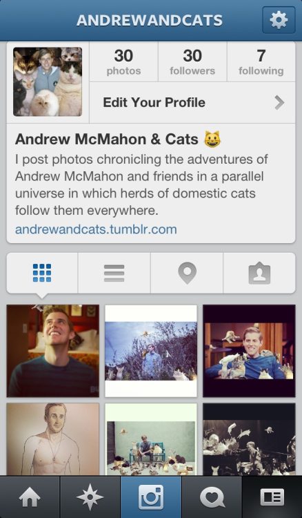 Don't forget to follow @andrewandcats on instagram & twitter for even more cats and other fun things, like coloring book pictures of shirtless Ryan Gosling!