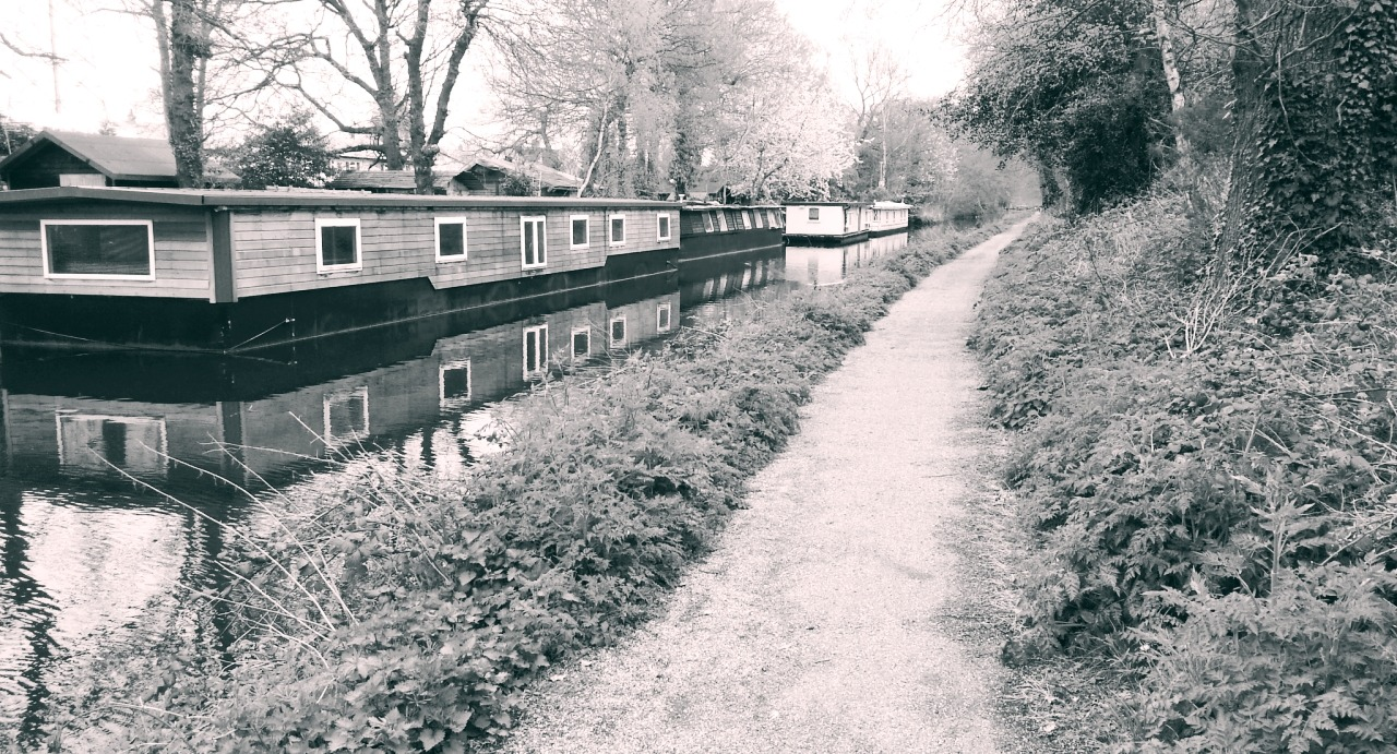 Houseboats on the Basingstoke canal
