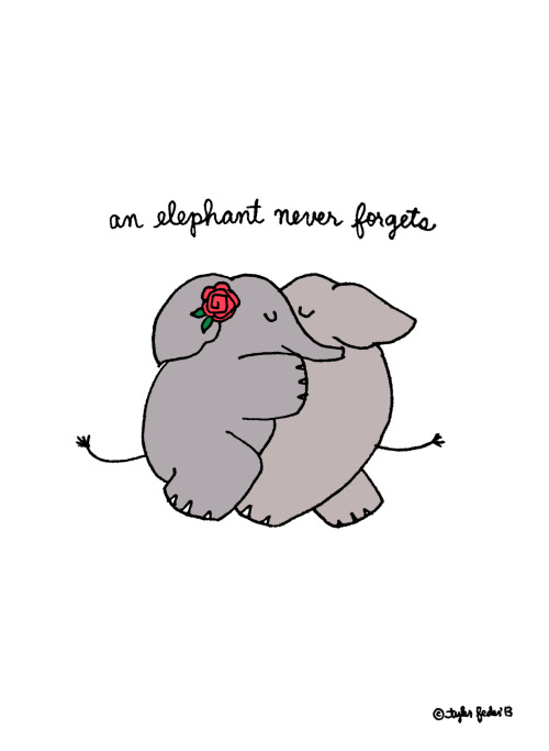 An Elephant Never Forgets (by Tyler Feder) This is for the tango-elephant-requesting anon!  Elephants are quite chunky so it was hard to depict the tango, but that's what the Spanish-looking rose is for!  I don't know why I made this one sort of weepy.  It just seemed right.