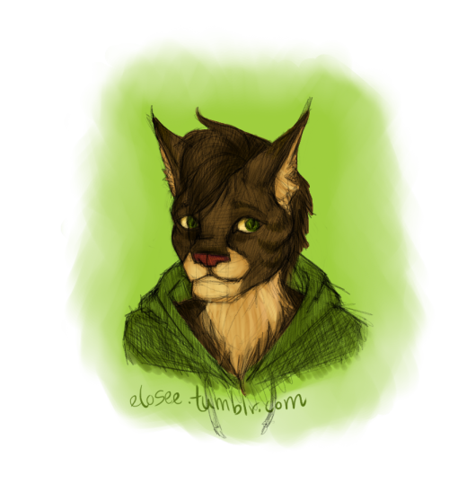 Maine Coon/Bengal Mix. c: Jumping on Kino's Kittensona bandwagon, because why not?