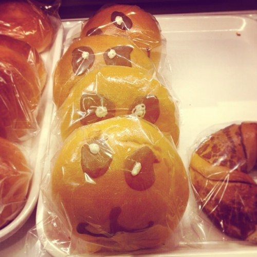 Panda buns? #asian #bakery #queens #instago #instafood #food #pastries #foodie #dessert #foodporn #foodgasm