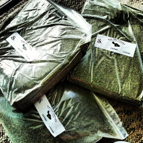 #nothing like a few #pounds of #good #fresh #green #catnip :] #animal #donation #heppy #cats #love #animals
