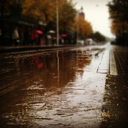 Tram lines flooding in October.