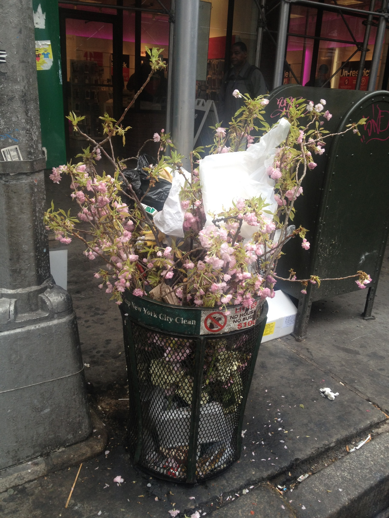 newyorkfromthebottom:   On the corner of 28th and 7th Avenue, someone threw out Spring. Whomever owned these beautiful branches of cherry blossoms decided they didn't want them or need them, or whatever- and threw them away in the corner trashcan. It's at the edge of the flower district, so it was probably a flower merchant who decided they were unsalable and didn't want to tote them around anymore. This beauty, this sign of spring, life, growth, went right in the garbage, and the city moved on. People piled their own trash on top of the flowers. Starbucks cups, pizza plates, plastic bags, the flotsam of city life was piled high of the pink blossoms. And the garbage, too, was a sign of life. We're outside, we're on the streets, we're enjoying our city, one of the greatest cities in the world. And it's Spring. NYC Forever.
