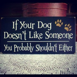 #truestory #dogs #love
