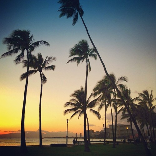 ishawaii:  Night fall…. | Glad I was able to catch the tail end of the sunset. Have a wonderful night! Honolulu, Hawaii • ♒ — photo taken by me_lv