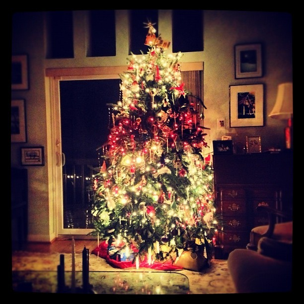 You can't tell from this picture of our gorgeous Christmas tree that the heat had just broken, and 14 hours later, it's now below 55 degrees in the house. Merry Christmas?