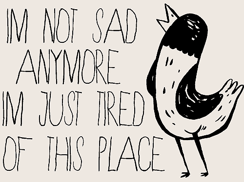 My Last Semester- The Wonder Years