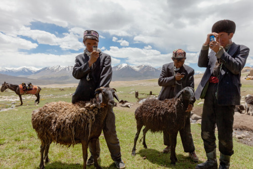 Kyrgyz herders with their smartphones. They are acquired by bartering and are charged using solar panels. Though useless for communication - cellular service does not reach the isolated plateau - the phones are used to play music and take photos. Photograph by Matthieu Paley.