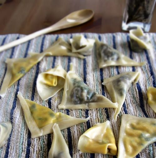 findvegan:  Hand-stuffed Ravioli with a Mushroom-Cashew sauce