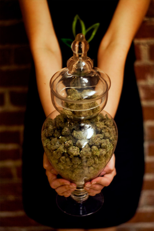 thatsgoodweed:  bring this to any house warming..