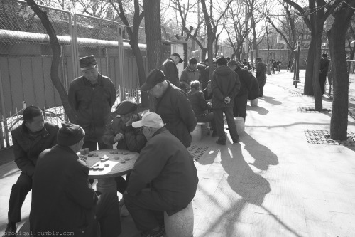 Saturday morning chess. Jingshan Park, Beijing