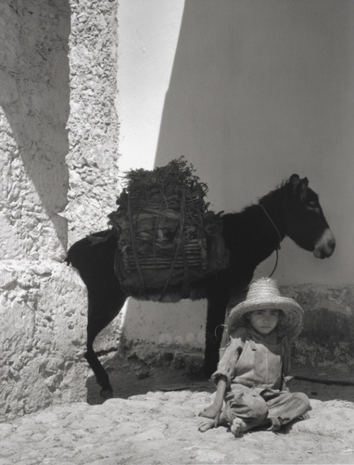 luzfosca:  Paul Strand  Boy and Donkey, 1933