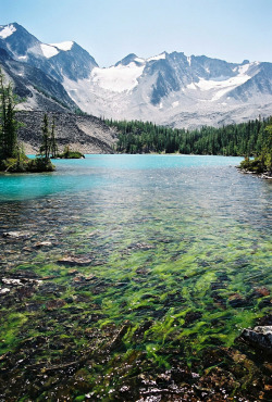touchdisky:  The Purcell Mountains, British-Columbia, Canada by Cwep
