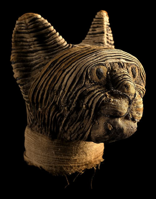 parlatorio:  Head of a Mummified Cat Egyptian Late Period to Ptolemaic, c. 664–30 BCE
