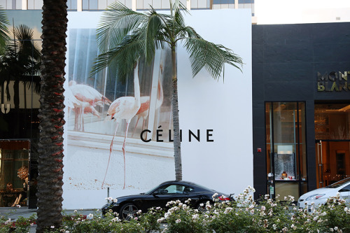 dolcecroptop:  juliachesky:  Celine, Rodeo Drive. 2012  the goals in this picture are endless