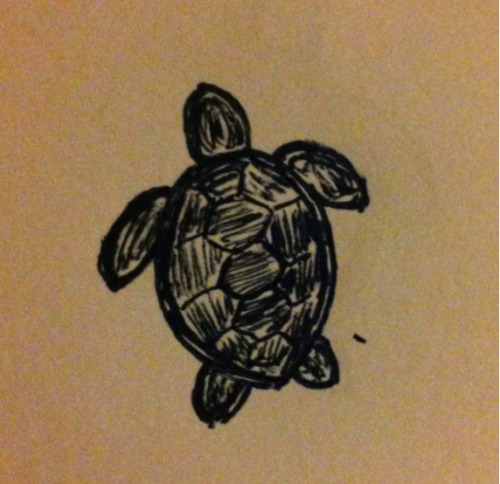 Sea turtle (tattoo sketch)