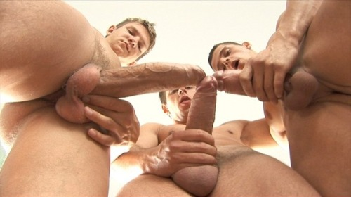 Notice the open mouths on the smaller boys: instinctively they prepare to suck the bigger cock.
