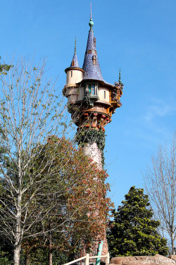 Rapunzel's Tower by disneylori on Flickr.