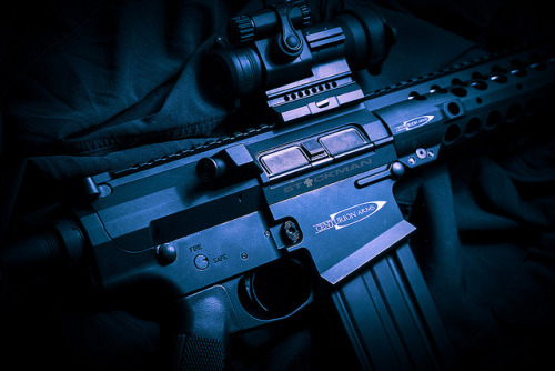 Centurion Arms .308 by stickgunner on Flickr.