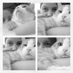 Mas cat selfies. I love this little dude.