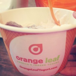 Orange leaf with momma