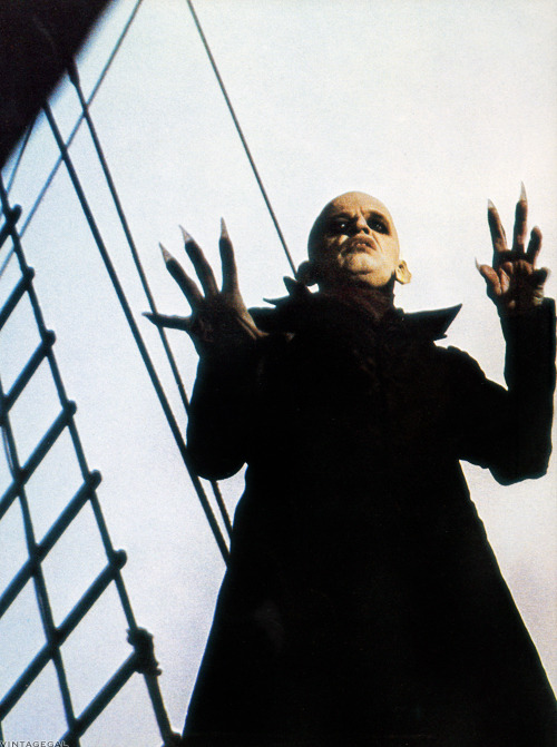 Klaus Kinski in Nosferatu the Vampyre (1979)