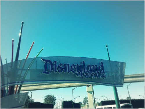 Disneyland Resort on Flickr.