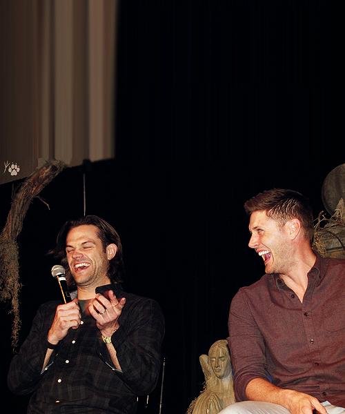 jaredgrrl:  J2 Pics Supernatural Vegas 2014 Con. [x] I love when they laugh like this! :)