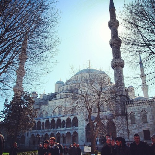 The blue mosque in daylight #istanbul #turkey #islam #travel #instago