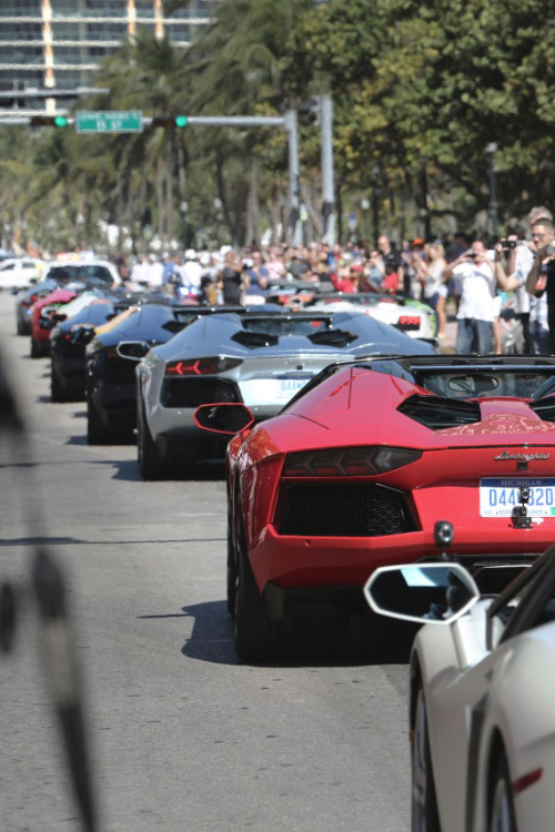 themanliness:  Aventador Roadster Parade | Source | More