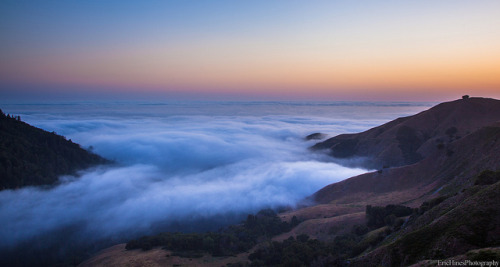 Above the Coastal Fog on Flickr.