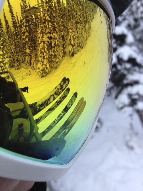 One of those goggle reflection pictures I love!