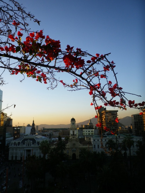 Santiago, Chile - The view from the best hostel in the city