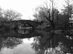 Reflective // Central Park, NYC [From the archives]