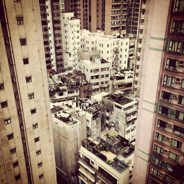 Up in the air #hongkong #midlevels #cityjungle