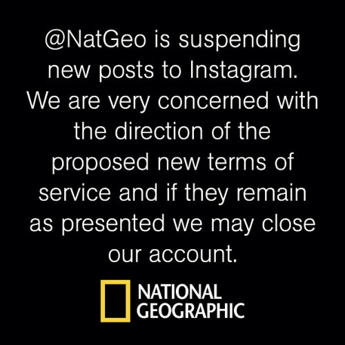 From the National Geographic Instagram account.