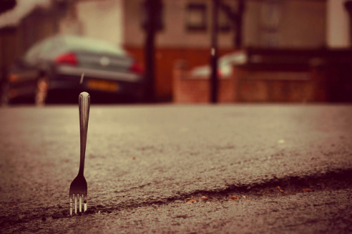 A Fork In The Road by morrisguy on Flickr.