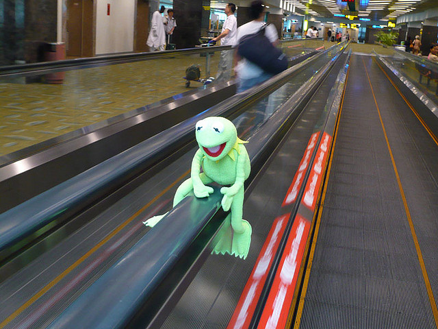 j-p-g:  Kermit in Singapore - 33 on Flickr