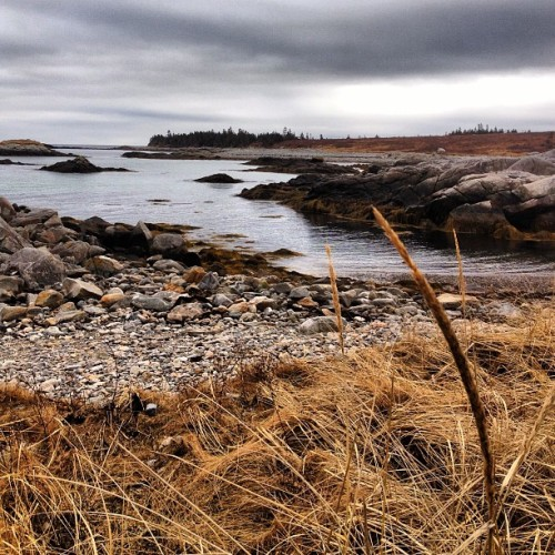 Just one more photo from our Sunday hike at the park. #seascapes #hiking #hikingtrails #nationalparks #novascotia #queenscounty #instahub #igershalifax #iphonegraphy  (at Kejimkujik Seaside - St. Catherines River Beach)