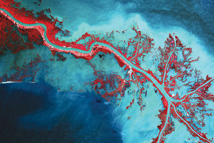 The Mississippi River delta, as imaged by Japan's Advanced Land Observing Satellite. As 17,000 cubic meters of water pump out every second, vegetation (here colored red) is fed by the rich sediment. The fractal nature of its branching is a natural property that emerges from finding the most efficient branch pattern to feed a large surface area. Earth, you damn fine. (via Unpopular Science)