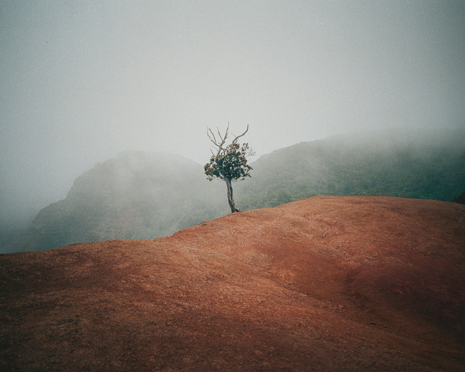 supersonicelectronic:   Cody Cobb. Some of the best photographs I've ever seen by Cody Cobb (On Tumblr): Read More