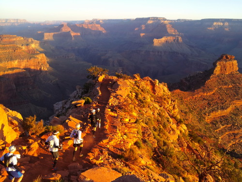 An early morning descent of the Grand Canyon's South Kaibab Trail.  Photo: Andy Gage
