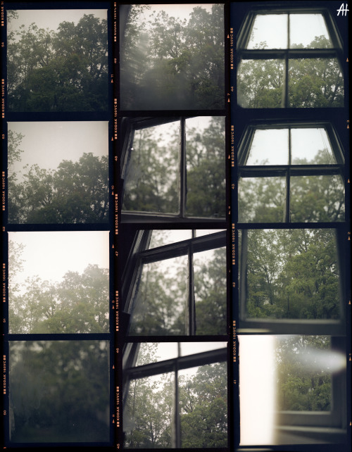 Contact sheets on a rainy St. Augustine day.
