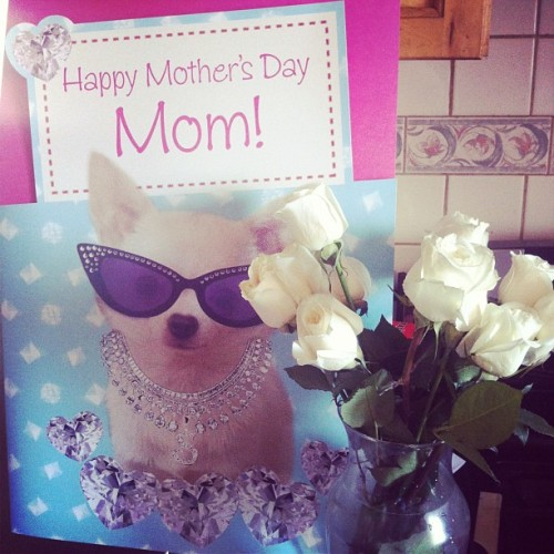 My card and flowers to my momma 💗