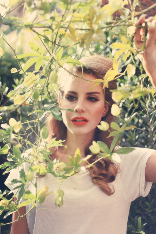 cellyxgee:  Lana is just perfect