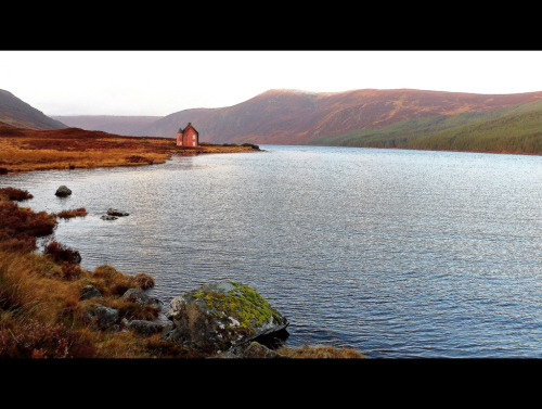 landscapelifescape:  Loch Glass & the deserted pink house near Culzie Lodge, Scotland (by Highland Art 13)