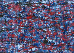 """Red White Blue Brown"" — Stephen C. Bird, 2012"