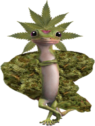smogoncc:  Here's an original fakemon I made (don't steal!) called Mariguana. It's a Grass/Fire-type Pokémon and knows moves like Blaze Kick and Smokescreen and has the ability Truant. Don't do drugs.