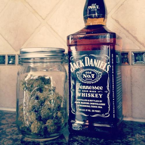 awesome-pot-head:  How ill be spending my spring break  tumblrs best weed